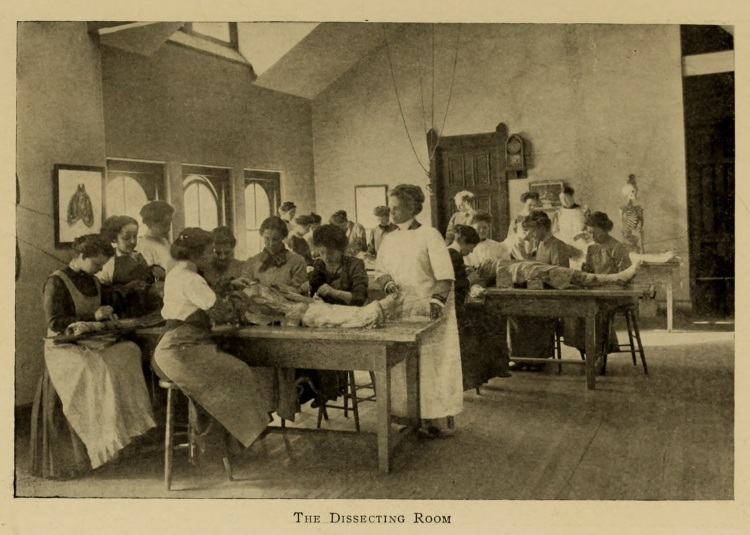 dissecting_room-1911-scalpel_wmcp_yearbook-p39